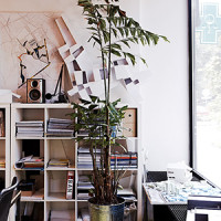 studio (7)